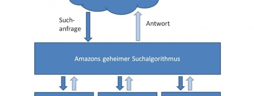 3-Amazon-Programme